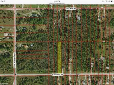 Naples Residential Lots & Land For Sale: Randall Blvd