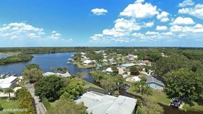 Fort Myers Single Family Home For Sale: 2216 Violet Dr