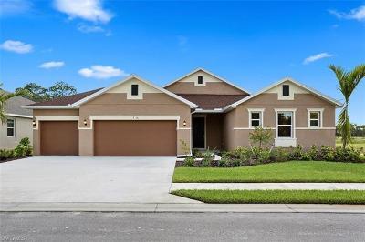 Collier County, Lee County Single Family Home For Sale: 17336 Coastal Ridge Way