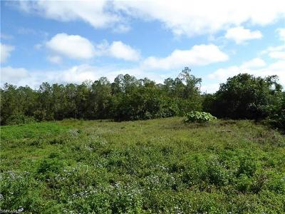 Naples Residential Lots & Land For Sale: 3350 Smith Rd
