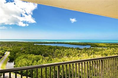 Naples FL Condo/Townhouse For Sale: $825,000