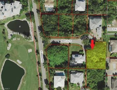 Marco Island Residential Lots & Land For Sale: 397 Beach Lilly Ln