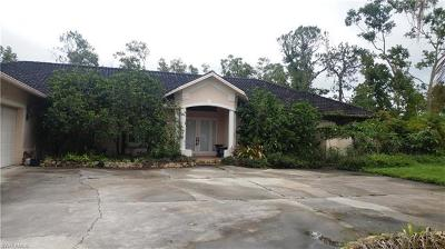 Single Family Home For Sale: 610 Weber Blvd S
