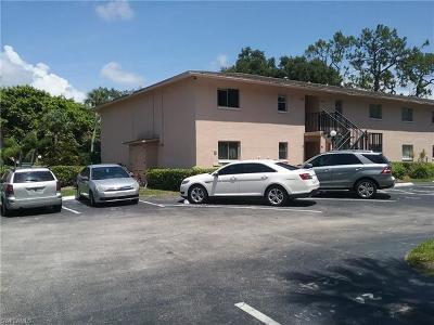 Bonita Springs Condo/Townhouse For Sale: 27249 Pullen Av Ave #B-22