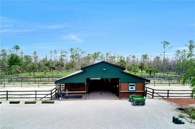 Goodland, Marco Island, Naples, Fort Myers, Lee Mobile/Manufactured For Sale: 2900 Newman Dr