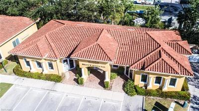 Naples Commercial For Sale: 5490 Bryson Dr