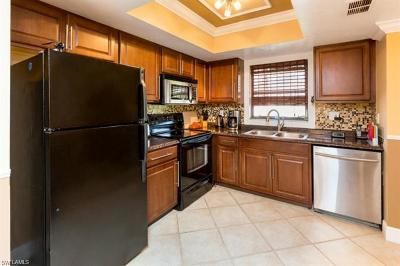 Bonita Springs Condo/Townhouse For Sale: 28121 Pine Haven Way #111
