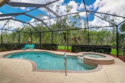 Estero Single Family Home For Sale: 20734 Torre Del Lago St