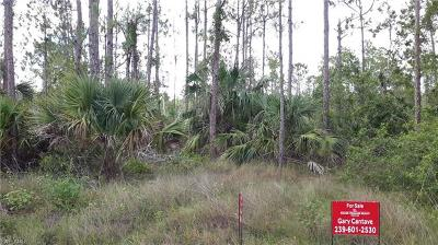 Naples Residential Lots & Land For Sale: 4781 Golden Gate Blvd E