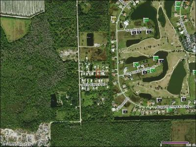 Naples Residential Lots & Land For Sale: 950 Auto Ranch Rd
