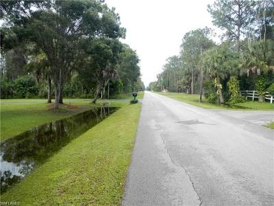 Collier County Residential Lots & Land For Sale: 6031 Spanish Oaks Ln