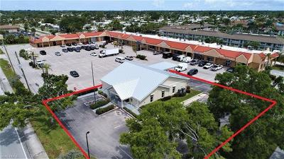 Naples Commercial For Sale: 5484 Rattlesnake Hammock Rd