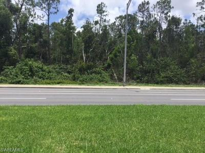 Naples Residential Lots & Land For Sale: Davis Blvd West Of Napoli Condominium Entrance