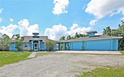 Collier County, Lee County Single Family Home For Sale: 11140 Riggs Rd