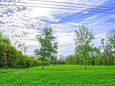 Lee County Residential Lots & Land For Sale: 15171 Shamrock Dr