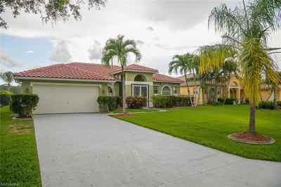 Collier County Single Family Home For Sale: 3385 Mystic River Dr