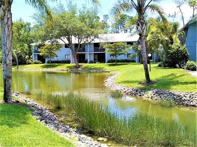 Bonita Springs Condo/Townhouse For Sale: 28161 Pine Haven Way #134