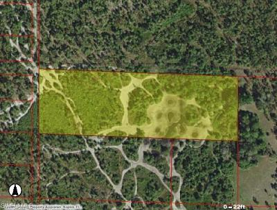 Naples Residential Lots & Land For Sale: Woodland Grade Rd