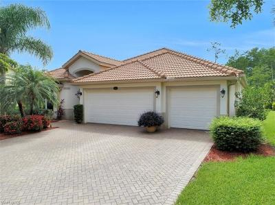 Estero Single Family Home For Sale: 21143 Palese Dr