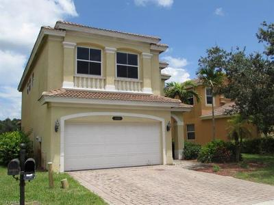 Estero Single Family Home For Sale: 20629 Silver Palm Dr E