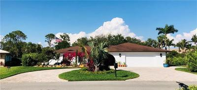 Bonita Springs Single Family Home For Sale: 9992 Treasure Cay Ln