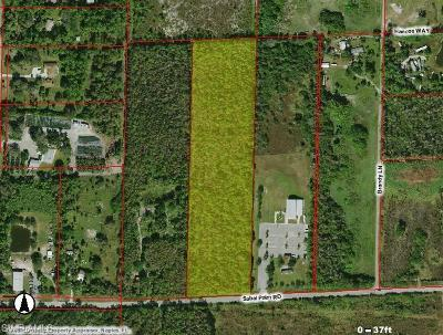 Naples Residential Lots & Land For Sale: Sabal Palm Rd