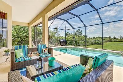 Naples Single Family Home For Sale: 4110 Randall Blvd