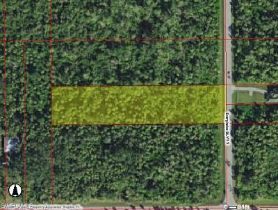 Collier County Residential Lots & Land For Sale: 2541 Everglades Blvd
