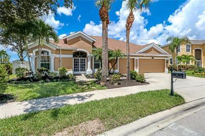 Pebblebrooke Lakes Single Family Home Pending With Contingencies: 305 Spider Lily Ln