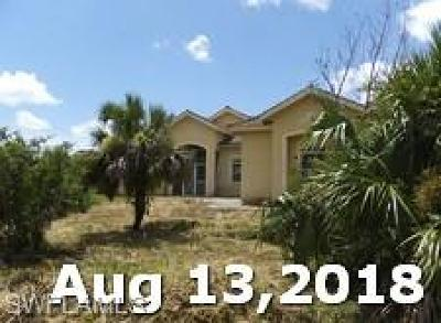 Collier County, Lee County Single Family Home For Sale: 4440 24th Ave SE