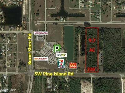 Cape Coral Commercial Lots & Land For Sale: 2827 SW Pine Island Rd