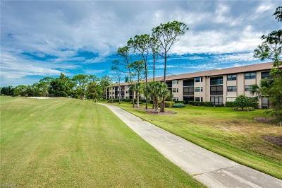 Naples FL Condo/Townhouse For Sale: $135,000