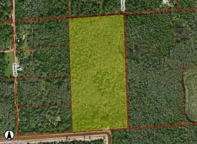 Naples Residential Lots & Land For Sale: Xxxx Rivers Rd