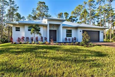 Bonita Springs Single Family Home For Sale: 9360 Bonita Bill St