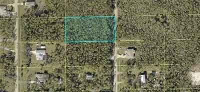 Bonita Springs Residential Lots & Land For Sale: 24300 Amarillo St