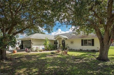 Bonita Springs Single Family Home For Sale: 27051 Lavinka St