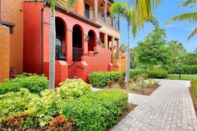 Collier County Condo/Townhouse For Sale: 9041 Alturas St #3803