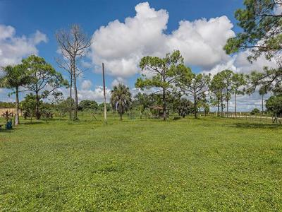 Naples Single Family Home For Sale: 11053 Riggs Rd