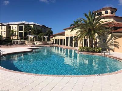 Naples Rental For Rent: 12936 Violino Ln #302