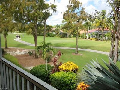 Naples FL Condo/Townhouse For Sale: $222,900