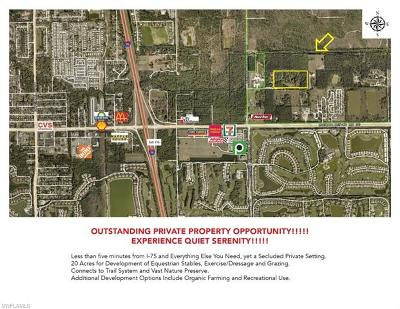 Bonita Springs Residential Lots & Land For Sale: 13337 Snell Ln