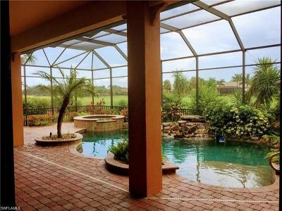 Collier County, Lee County Single Family Home For Sale: 28535 Raffini Ln