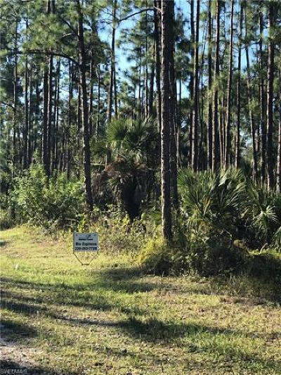 Collier County Residential Lots & Land For Sale: Everglades Blvd S