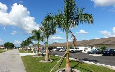 Cape Coral Condo/Townhouse For Sale: 4513 SW 8th Ct #109