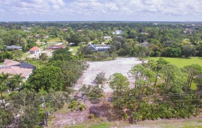 Naples Residential Lots & Land For Sale: 552 Ridge Dr