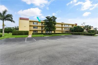 Naples FL Condo/Townhouse For Sale: $163,000