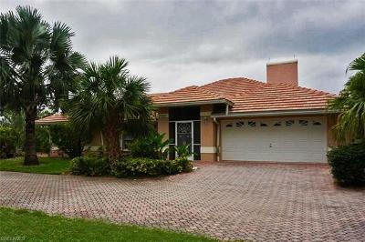 Bonita Springs Single Family Home For Sale: 24885 Segovia Ct