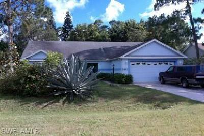 Single Family Home Pending With Contingencies: 27240 Tortoise Trl