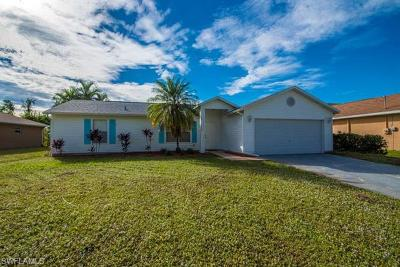 Fort Myers Single Family Home For Sale: 9030 Henry Rd
