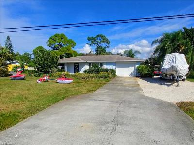 Estero Single Family Home For Sale: 20621 Pine Tree Ln